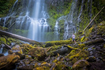 Woman Stands at the Bottom of Proxy Falls Stock Photo