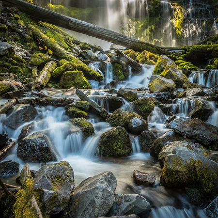 Long Exposure of the Bottom of Proxy Falls in Oregon wilderness