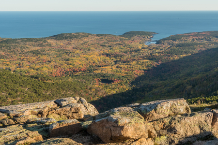 Overlook of the Autumn Forest From Cadillac Mountain in Acadia Stock Photo