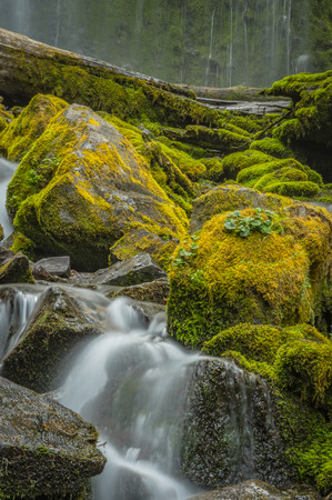 Water Rushing Around Moss Covered Boulders at Base of Prozxy Falls 版權商用圖片