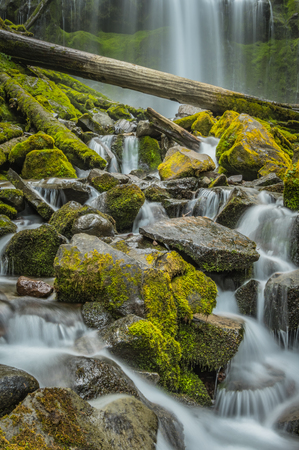 Long Exposure of the Mossy Rocks at Proxy Falls in Oregon wilderness