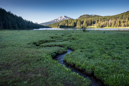 Alpine meadow with creek winding through to lake in Oregon