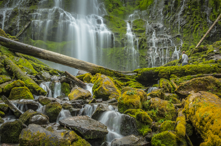 Woman Watches Water Flowing Down Proxy Falls in Oregon wilderness