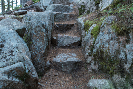 Close Up of Rock Stairs on Maine trail