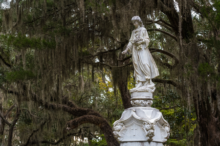 Walking Woman with Flowers Wide and spanish moss behind