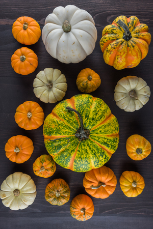 Collection of Pumpkins on Dark Background From Above