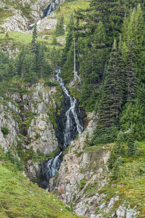 Waterfall in Paradise of Mount Rainer during summer