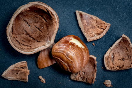 Hazelnut and Broken Shell over black slate background