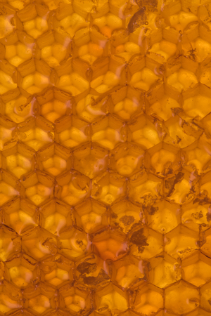 Honey Comb Hex Pattern across image vertical background