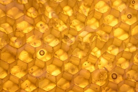 Honey Comb Texture Backlit Horizontal Background Image
