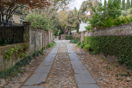 Ivy Covered Side Alley in Charleston South Carolina Stock Photo