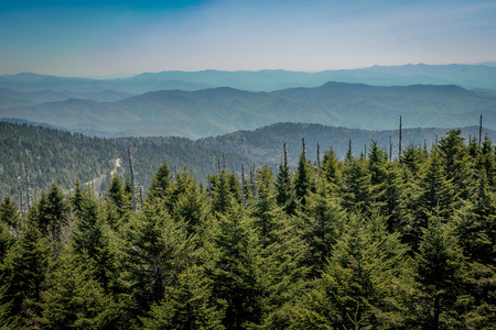 Looking South From Clingmans Dome over mountain range