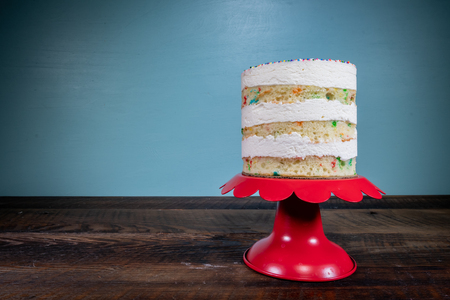 Three Tiered Naked Funfetti Cake On Cake Stand Copy Space Left Banco de Imagens - 104998690