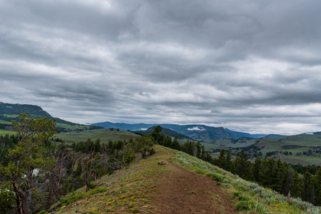 Trail Follows Ridge Line in Yellowstone Wilderness on overcast day