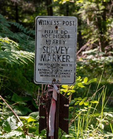 Old Survey Marker Sign in sunny green forest