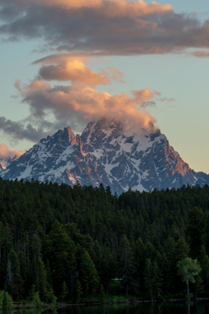 Pine Trees Surround Base of Grand Teton Range