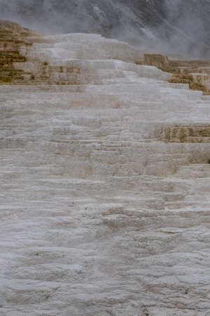 Detail of White Residue on Mammoth Hot Springs on foggy day