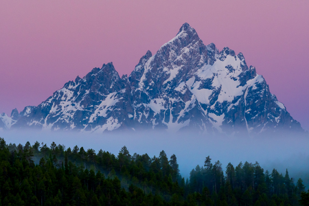Foggy Forest and Grand Teton at dawn in summer