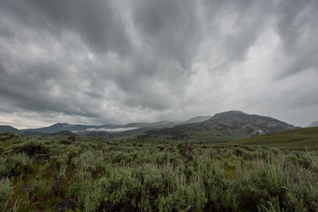 Dramatic Clouds Over Wyoming Wilderness in Early Summer