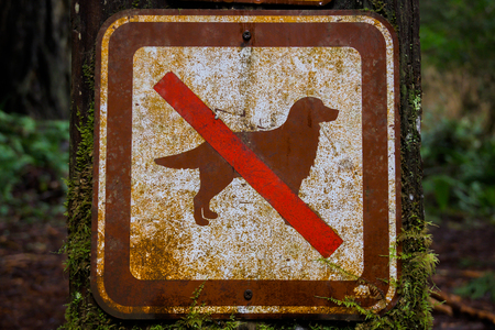 Old No Dogs Sign shows regulation for hiking trail Banque d'images - 121786845