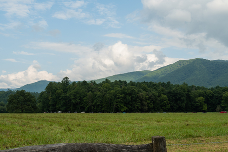 Long Line of Traffic In Cades Cove in late summer