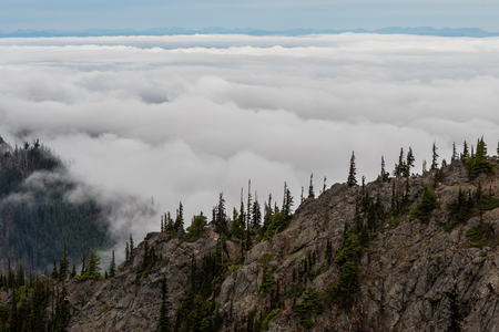 Thick Clouds in Olympic Valley in Washington Wilderness