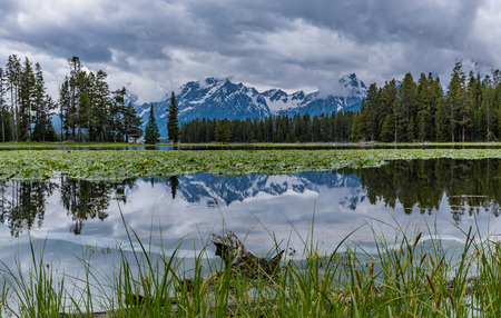 Tetons Range Reflects in Swan Water on Calm Afternoon