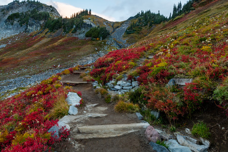 Trail Cuts Through Brush Changing Colors in Fall on way to Pinnacle Peak Stock fotó