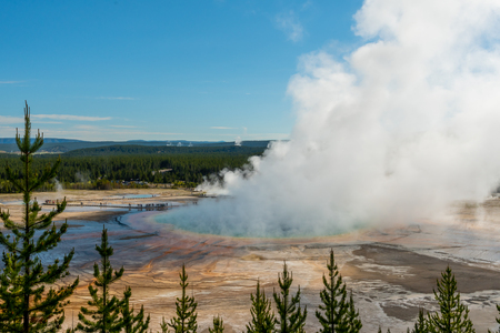 Thick Steam Rises Out of Grand Prismatic Spring Wide View