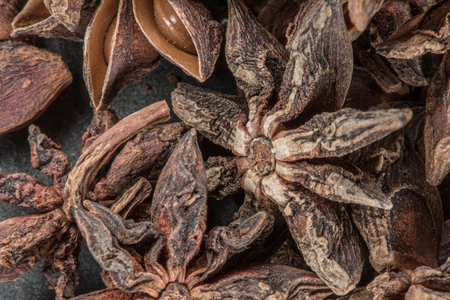 Star Anise Bunch shows the intricate detail of the whole spice