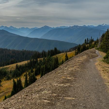 Trail Along the Ridge in Washington Wilderness in autumn