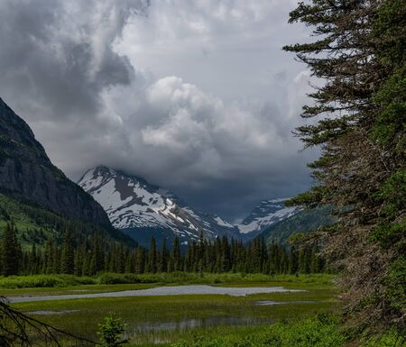 Marshy River in Glacier Wilderness toward gunsight mountain Stok Fotoğraf