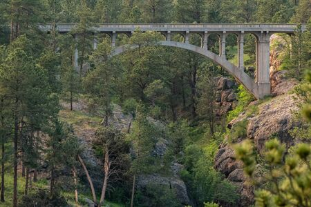 Bridge Over Ravine in Wind Cave National Park Wilderness