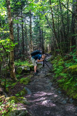 Man Bends Over Tripod to capture detail in a mountain forest