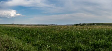 Sweeping Panorama of Grass in Badlands National Park