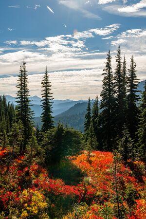 Fall on the trail around Naches Peak in Washington