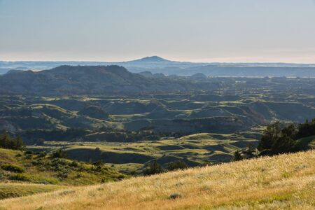 Looking Across Theodore Roosevelt National Park in late afternoon light