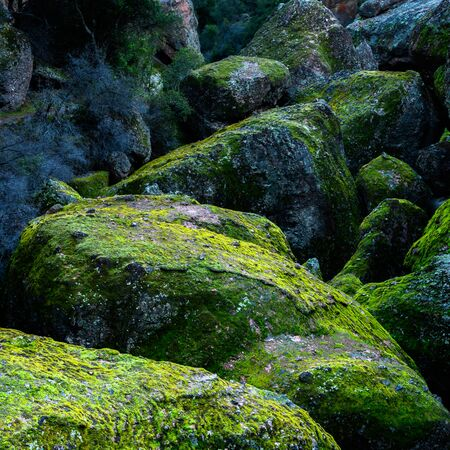 Giant Mossy Boulders Snake Down Canyon in Pinnacles National Park