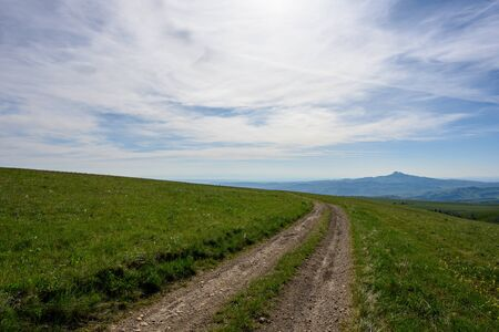 Dirt Road Cuts Through Green Field in Wyoming Wilderness in summer