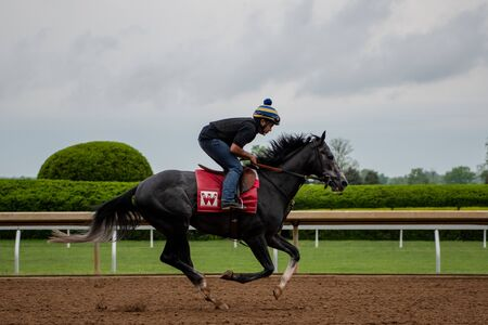 Lexington, United States: May 3, 2019: Profile of Black Horse Training at Keeneland