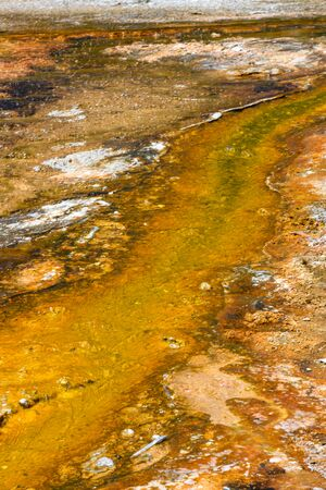Yellow Sulfur Stream from Hot Spring in Yellowstone Reklamní fotografie