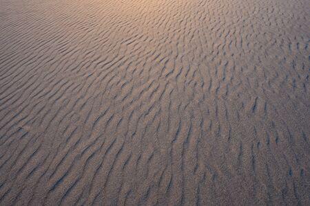 À travers le sable ondulé avec une lumière dorée