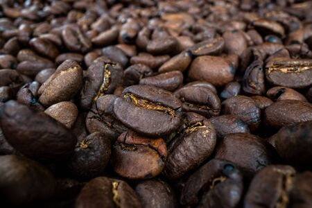 Pile of Roasted Coffee Beans spread across parchment paper
