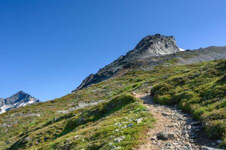 Trail Winds Uphill in North Cascades wilderness mountain area Reklamní fotografie