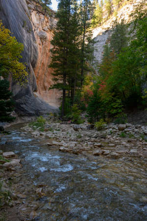 Small Stream At The Beginning Of The Narrows Canyon hike