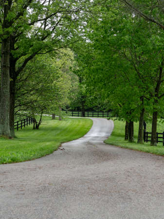 Driveway Snakes Through Horse Farm in countryside