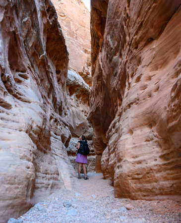 Woman Looks Up Through Slot Canyon in Valley of Fire State Park Imagens