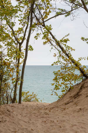 Trees Frame the Blue Waters of Lake Michigan in Indiana Dunes National Park