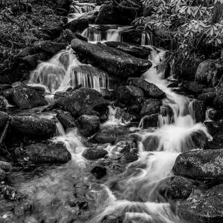 Water Cascades Over Mossy Rocks in Black and White