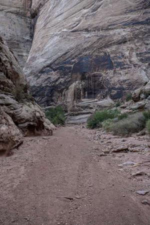 Wide Dirt Trail Through Slick Rock Canyon in Capitol Reef National Park